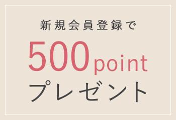 新規会員登録で500pointプレゼント
